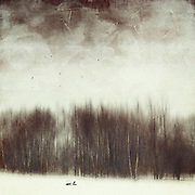 Abstract winter landscape with birds - textured &amp; manipulated photograph<br />