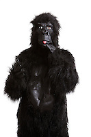 Young man in a gorilla costume sticking out his tongue against white background
