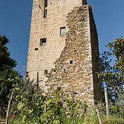 Ancient Tower of the 1080, restored<br /> by the Artist Franco Innocenti