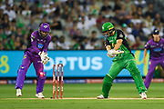 14th January 2019, Melbourne Cricket Ground, Melbourne, Australia; Australian Big Bash Cricket, Melbourne Stars versus Hobart Hurricanes;  Evan Gulbis of the Melbourne Stars is bowled by Johan Botha of the Hobart Hurricanes