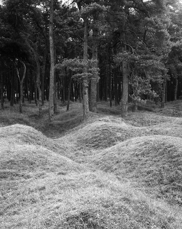 1926<br /> <br /> VIMY, a bomb crater from the First World War.<br /> <br /> Mr Dutkiewicz was placed under arrest. During his work at the field, he uncovered a body of a German soldier, &ldquo;Artur Konr- 582&rdquo;. Dutkiewicz looted the body and then buried it in a nearby bomb crater.<br /> <br /> <br /> VIMY,  leje po bombach z okresu I Wojny Światowej. <br /> <br /> &quot;Do aresztu trafił Dutkiewicz, kt&oacute;ry podczas pracy w polu odkopał i wydobył trupa żołnierza niemieckiego 'Artur Konr - 582'. Dutkiewicz ograbił ciało po czym zakopał je ponownie w znajdującym się nieopodal leju po pocisku.&quot;