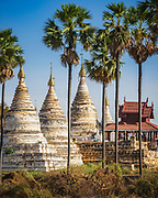 Dramatic white stupa in Bagan, emerging from behind palm trees