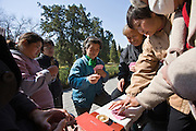 Group plays cards in park of the Temple of Heaven, Beijing, China
