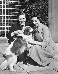 Princess Margaret and her fiancé, photographer Antony Arstrong-Jones, play with one of her pet dogs at the Royal Lodge, Windsor. The princess and her fiancé are pictured together for the first time since the announcement of their engagement. They are spending the weekend with the Queen Mother.