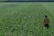 07: FARMS CROP EXAMINATION