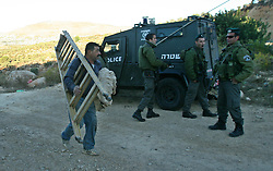 60620224  <br /> Israeli soldiers guard as Palestinian farmers make their way to harvest olive trees in Salem village, near the Jewish settlement of Elone Moreh, east of the West Bank city of Nablus on Monday Oct. 21, 2013. Picture by imago /  i-Images<br /> UK ONLY