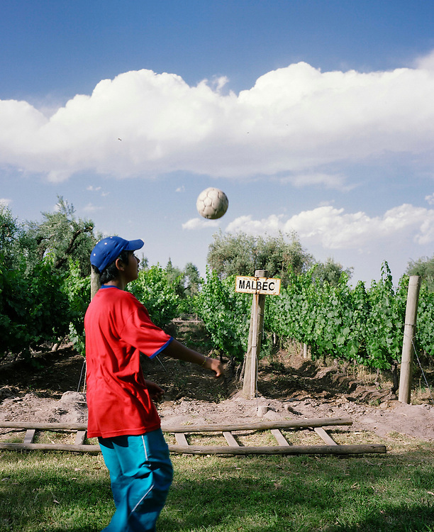 A young boy juggles a  soccer ball in front of Malbec vines at Finca La Heredad in the Luján de Cuyo area of Mendoza, Argentina. The  farm's vines surround the boutique hotel Club Tapiz.