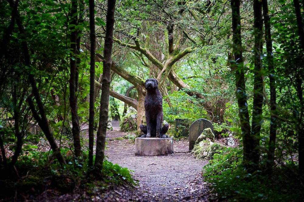 Dogs' Cemetary, Portmeirion, Gwynedd, North Wales, UK.