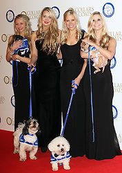 Passionata arriving at the Collars & Coats Gala Ball in London, Thursday, 7th November 2013. Picture by Stephen Lock / i-Images