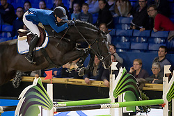 Melchior Judy Ann, BEL, Dominator 2000 Z<br /> Young Stallions 6 years of age<br /> Vlaanderens Kerstjumping Memorial Eric Wauters<br /> © Dirk Caremans<br /> 27/12/2016