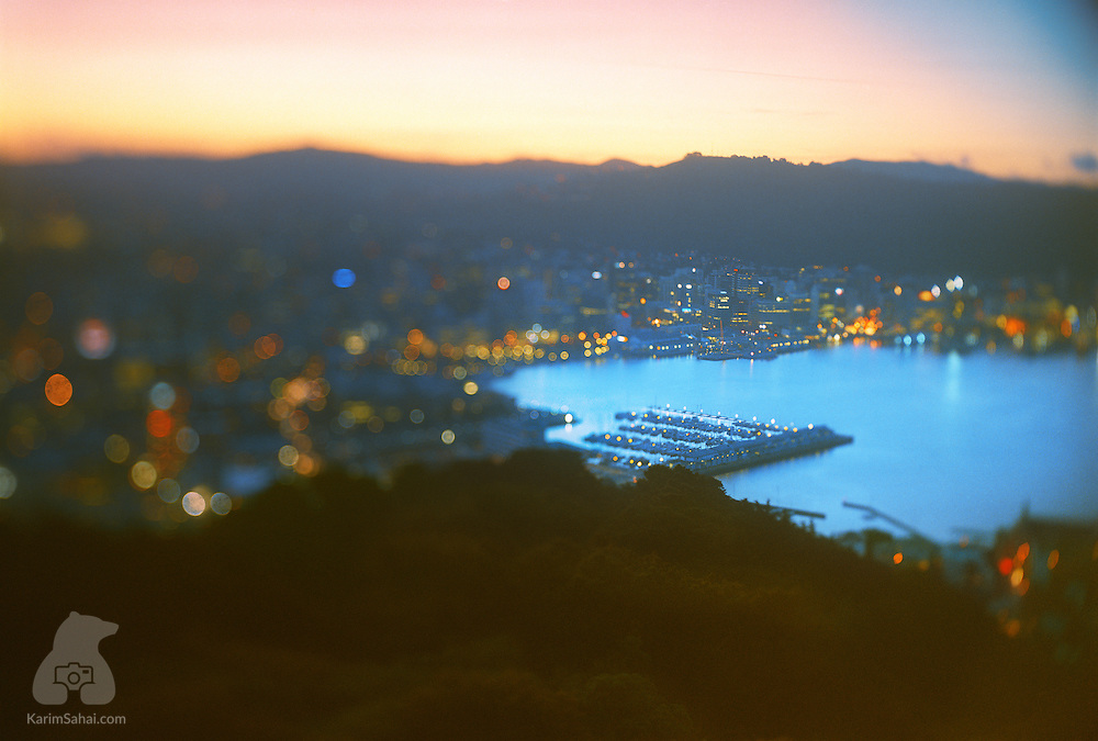 Oriental Bay, Port Nicholson Yacht Club and Central Business District at dusk, seen from Mount Victoria, Wellington, New Zealand.