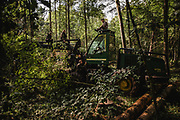 September 2017. When activists gets a signal that there're ongoing works in the forest that's probably illegal, they try to stop the logging. Harvester and forwarder machines has been blocked durning logging. Activists claims that these machines has been working in area where collecting of wood is prohibited. Photo: Krystian Maj
