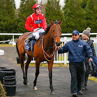 New Rich - john Fahy winners lead in <br /> The Bet And Watch Every Race At Unibet Handicap<br /> Lingfield Park<br /> 17/2/16.<br /> ©Cranhamphoto.com