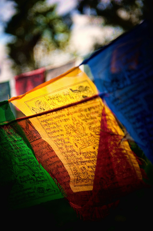 Asia, Tibet, Bhutan, Dochu, Pass, Mountain, Mountains, Chorten, prayer flags