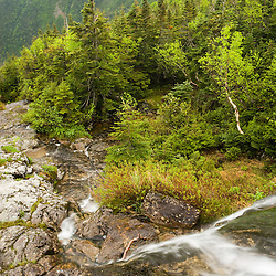 A small waterfall in  Ammonoosuc Ravine below New Hampshire's Mount Washington.  Ammonoosuc River headwater stream.