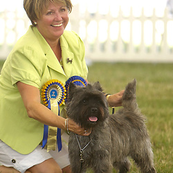 Leeds Championship Dog Show 2013 Group Entries