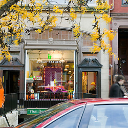 Newbury Street in autumn, shop windows with fall decor, Boston, MA.