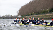 Putney, GREAT BRITAIN,   Oxford Blue Boat - Training, 2009 Boat Race,  Rowing 'Championship Course' Putney to Mortlake, on the River Thames, Wed 25.03.2009. [Mandatory Credit, Peter Spurrier / Intersport-images].Oxford Crew, Bow, Michal PLOTKOWIAK, Colin SMITH, Alex HEARNE, Ben HARRISON, Sjoerd HAMBURGER, Tom SOLESBURY, George BRIDGEWATER, Ante KUSURIN and cox Colin GROSHONG. .