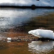Winter's last bit of snow melting away, along Lake Mary Road - Northern AZ