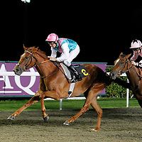 Hot Snap and Eddie Ahern winning the 7.45 race