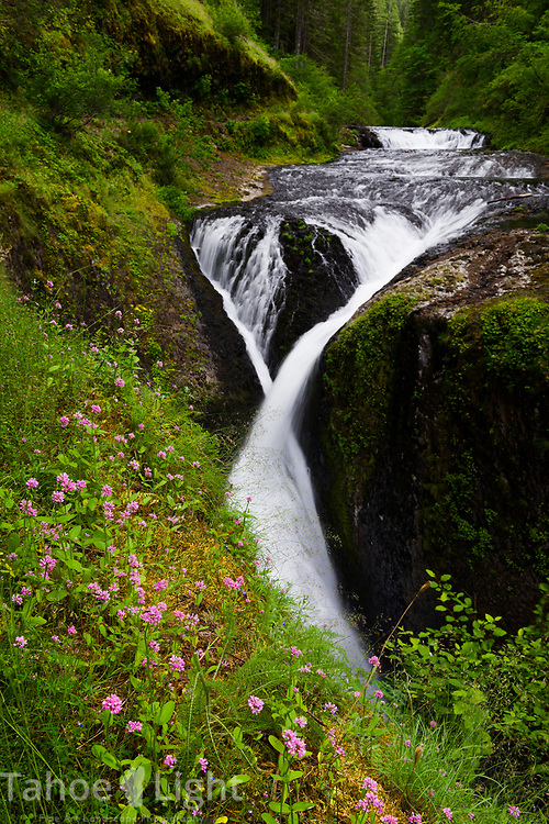 Twister Falls on the Eagle Creek Trail along the Columbia River Gorge in Oregon. This is a spectacular waterfall hike going past 7 falls in nearly as many miles. The lush greenery and waterfalls of the Pacific Northwest are a must visit.
