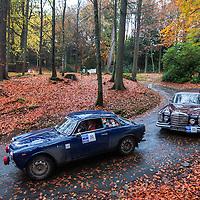 Car 30 Jayne Wignall Peter Rushforth Alfa Romeo Giulia Sprint
