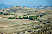 Undulating hills by San Quirico d'Orcia, in the Val D'Orcia area of Tuscany, Italy