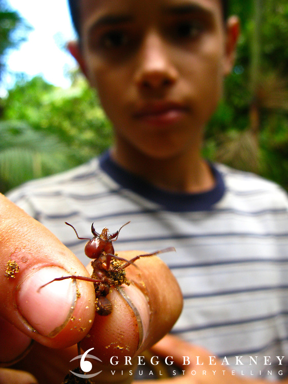 Local Boy With Ant - Sierra Nevada - Northwest Colombia