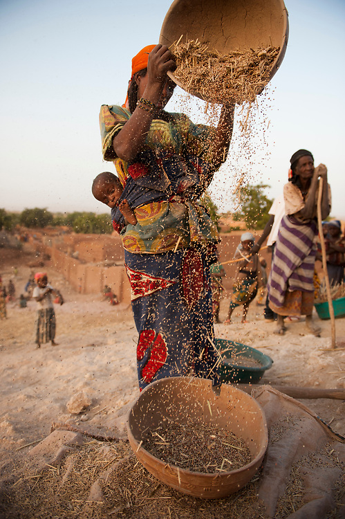 In the village of Garadawa, near Keita, Niger.  One of the villages where the Project Keita has been restoring soil.  Most of the work has been done by the women of the area. Issa Aminatou is winnowing sorghum by pouring the grain and allowing the evening breezed to blow away the chaff.  Her baby is on her back, getting first lessons in where food comes from.