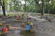 Coon Dog Cemetery.© Suzi Altman/TheOneMediaGroup