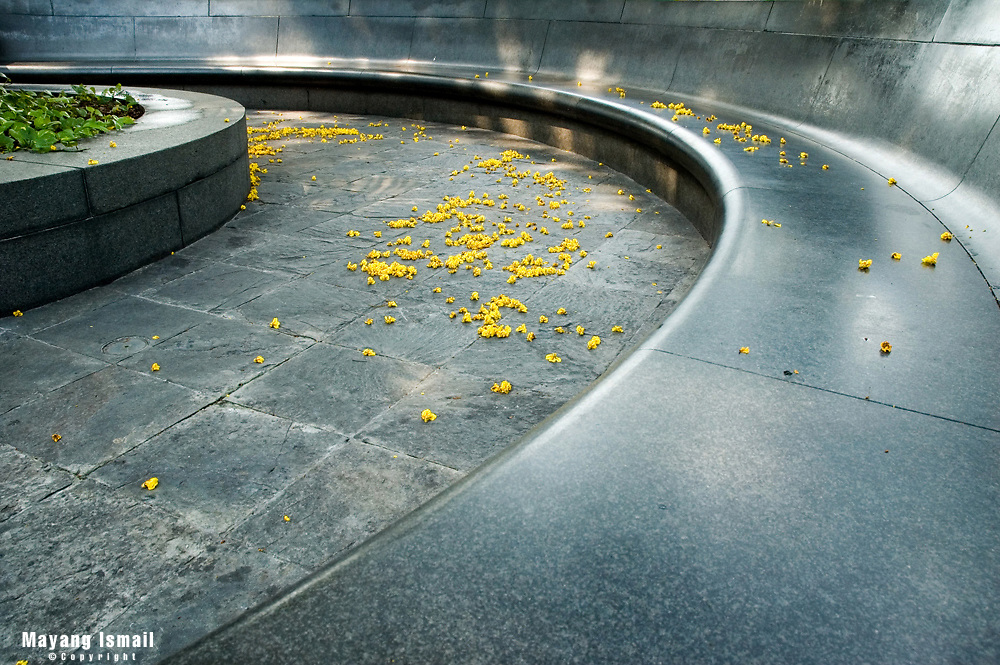 Yellow flowers strewn on a public seating area by a shopping complex in Singapore