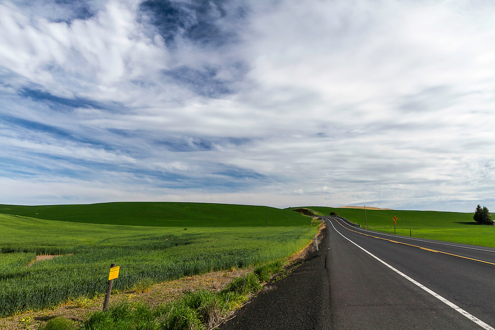 Summertime in the Palouse as roads lead to exciting new locations.