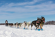 Musher Rick Casillo after the restart in Willow of the 46th Iditarod Trail Sled Dog Race in Southcentral Alaska.  Afternoon. Winter.