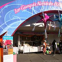 TOLUCA, México.- Empresarios sociales del estado de México, exponen por temporada navideña artesanías, joyería, alimentos, textiles en la  alameda central de la explanada del parque Cuauhtémoc. Agencia MVT / Sulma Jiménez. (DIGITAL)