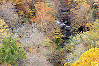 Fall Colors at Clifty Falls State Park, Madison, Indiana