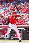 CINCINNATI, OH - APRIL 11: Joey Votto #19 of the Cincinnati Reds bats during the game against the St. Louis Cardinals at Great American Ball Park on April 11, 2015 in Cincinnati, Ohio. The Cardinals defeated the Reds 4-1. (Photo by Joe Robbins)  Joey Votto