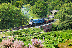 © Licensed to London News Pictures. 01/09/2015. Darnholme, UK. Picture shows the Sir Nigel Gresley steam train travelling along the Goathland to Pickering line in the North Yorkshire Moors.Photo credit: Andrew McCaren/LNP