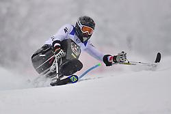WALLNER Simon, LW10-1, AUT, Men's Giant Slalom at the WPAS_2019 Alpine Skiing World Championships, Kranjska Gora, Slovenia