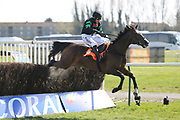 iMOLLY THE DOLLY (4) ridden by Harry Skelton and trained by Dan Skelton winning The Class 2 J & D Pierce Novices Champion Handicap Steeplechase over 3m (£100,000)dur ng the Scottish Grand National race day at Ayr Racecourse, Ayr, Scotland on 13 April 2019.
