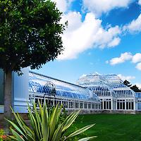 Haupt Conservatory, New York Botanical Gardens, Bronx, New York City