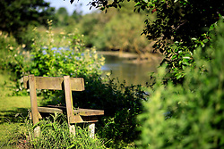 UK ENGLAND WILTSHIRE 26JUN08 - Bench by the river Kennet near Stichcoombe in rural Wiltshire, western England...jre/Photo by Jiri Rezac / WWF UK..© Jiri Rezac 2008..Contact: +44 (0) 7050 110 417.Mobile:  +44 (0) 7801 337 683.Office:  +44 (0) 20 8968 9635..Email:   jiri@jirirezac.com.Web:     www.jirirezac.com..© All images Jiri Rezac 2008 - All rights reserved.