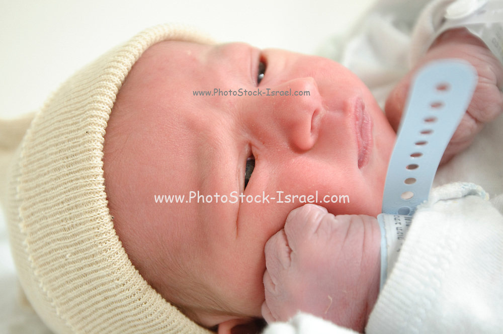 A one day old baby boy - model release available