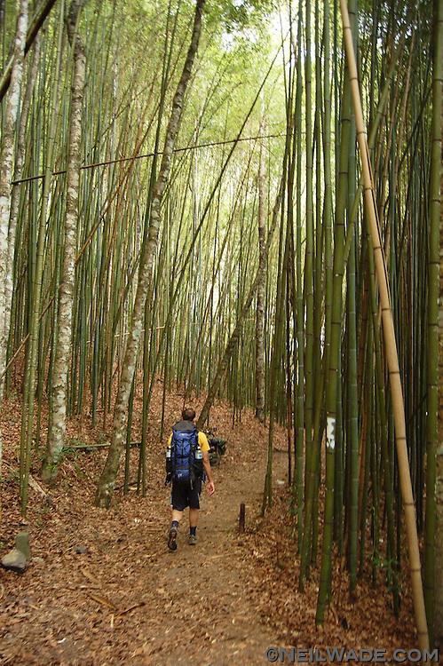 Hiking Syaroko Mountain in Taiwan.