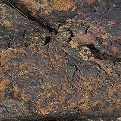 Rock Face Detail, Lower Negro Island, Castine, Maine, US