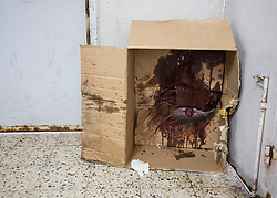 © Licensed to London News Pictures. 17/07/2014. Gaza.   <br /> *WARNING - IMAGE CONTAINS CONTENT OF A GRAPHIC NATURE*<br /> <br /> The Gaza morgue has received over 190 bodies during the current conflict between Israel and Hamas.   Photo credit : Alison Baskerville/LNP