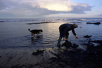Collecting sea coal. Sea coal is coal washed up on beaches either from exposed undersea seams or waste dumped in the sea from collieries in the North East of England.