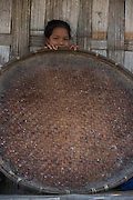 Girl with rice drying basket<br /> Mising Tribe (Mishing or Miri Tribe)<br /> Majuli Island, Brahmaputra River<br /> Largest river island in India<br /> Assam,  ne India