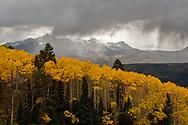 Stormy Aspen Mountain