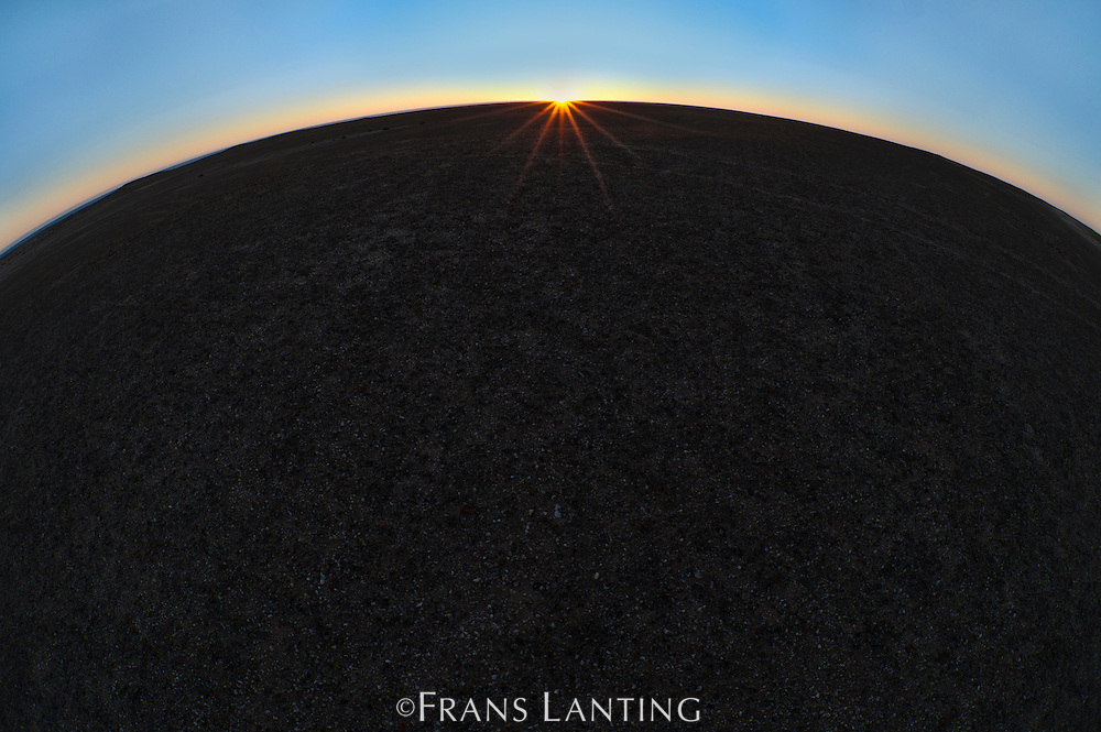 Sun setting over gravel plain, West Coast National Recreation Area, Namibia