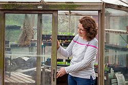 Opening a greenhouse door during warm weather